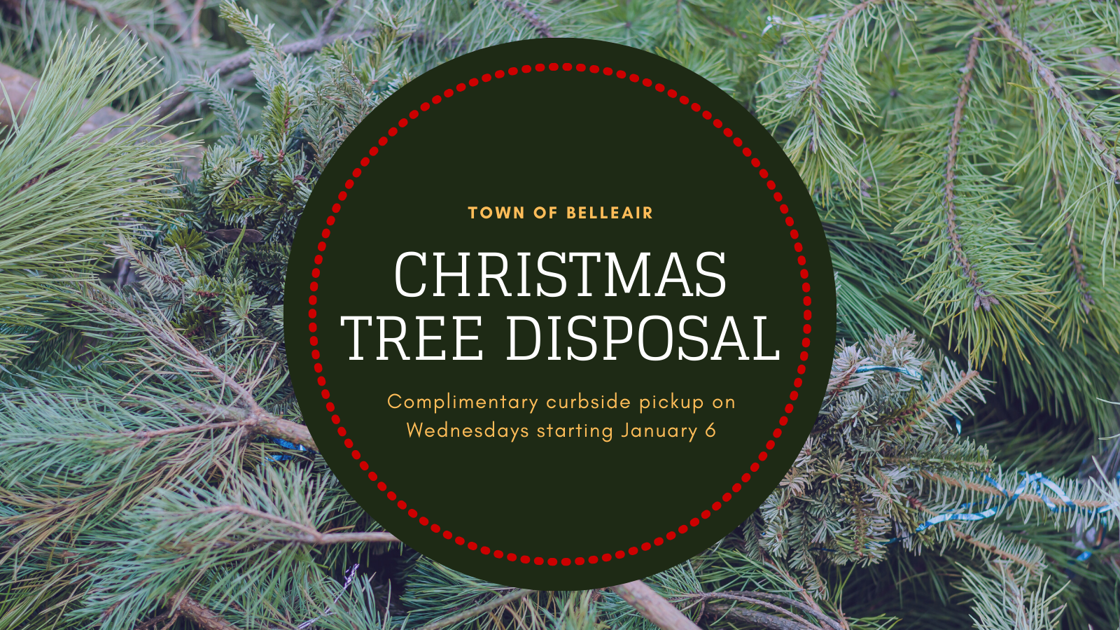 Belleair Christmas Tree Disposal - Complimentary curbside pickup on Wednesdays starting 1/6