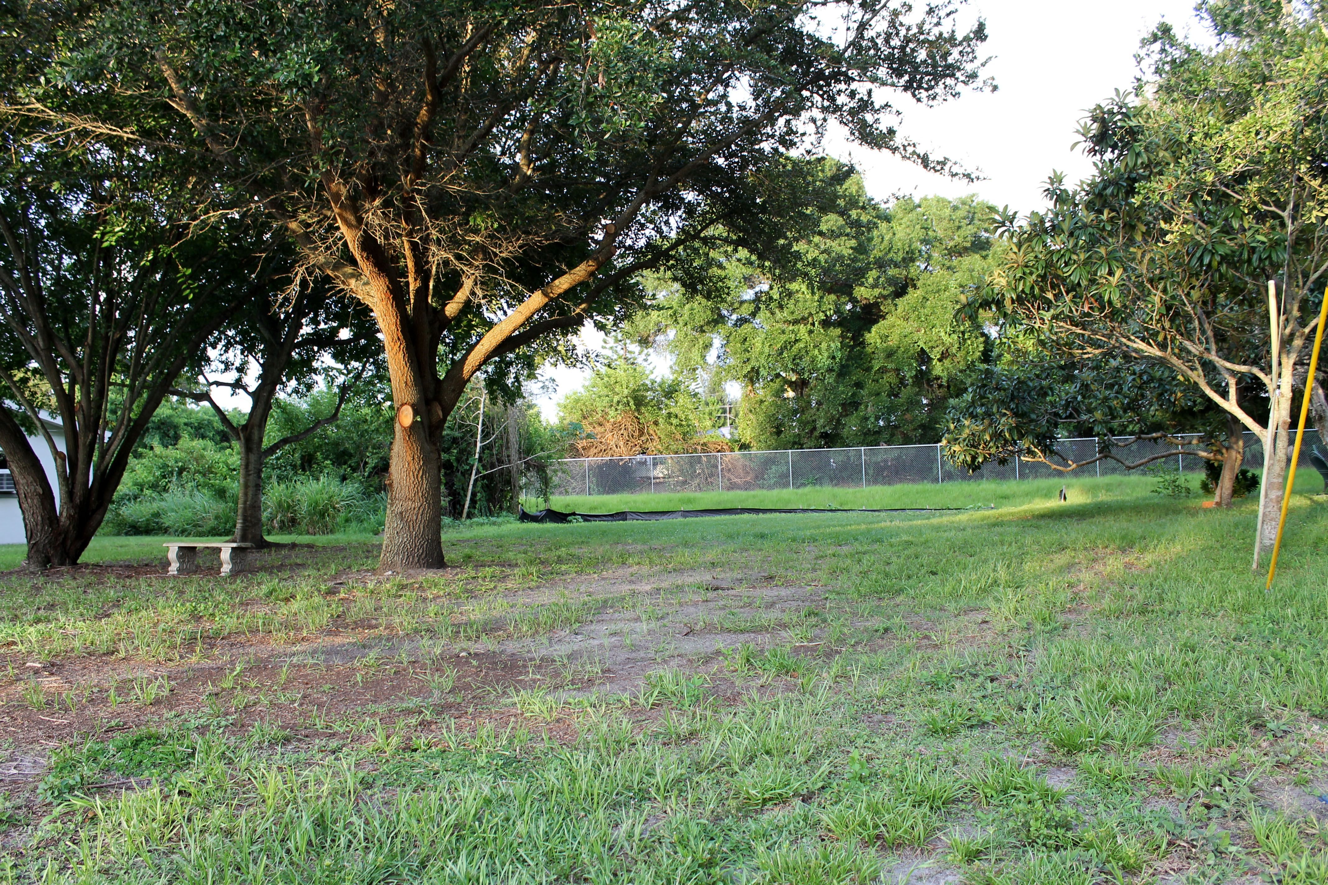 Open green space in Barbara Circle Park with trees and a concrete bench in the background