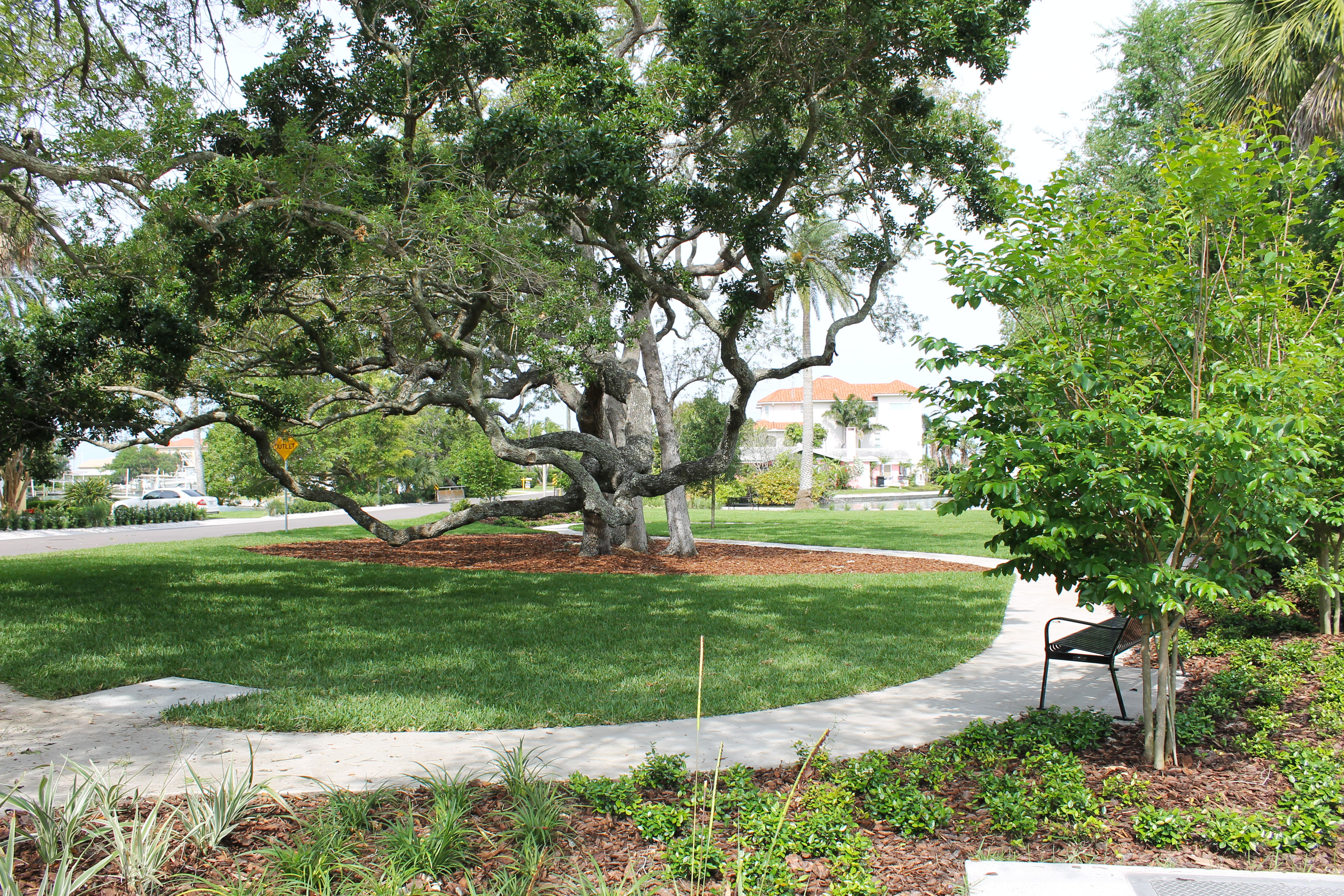 A view of Winston Park that includes grass, flower beds, a sidewalk, and a large oak tree
