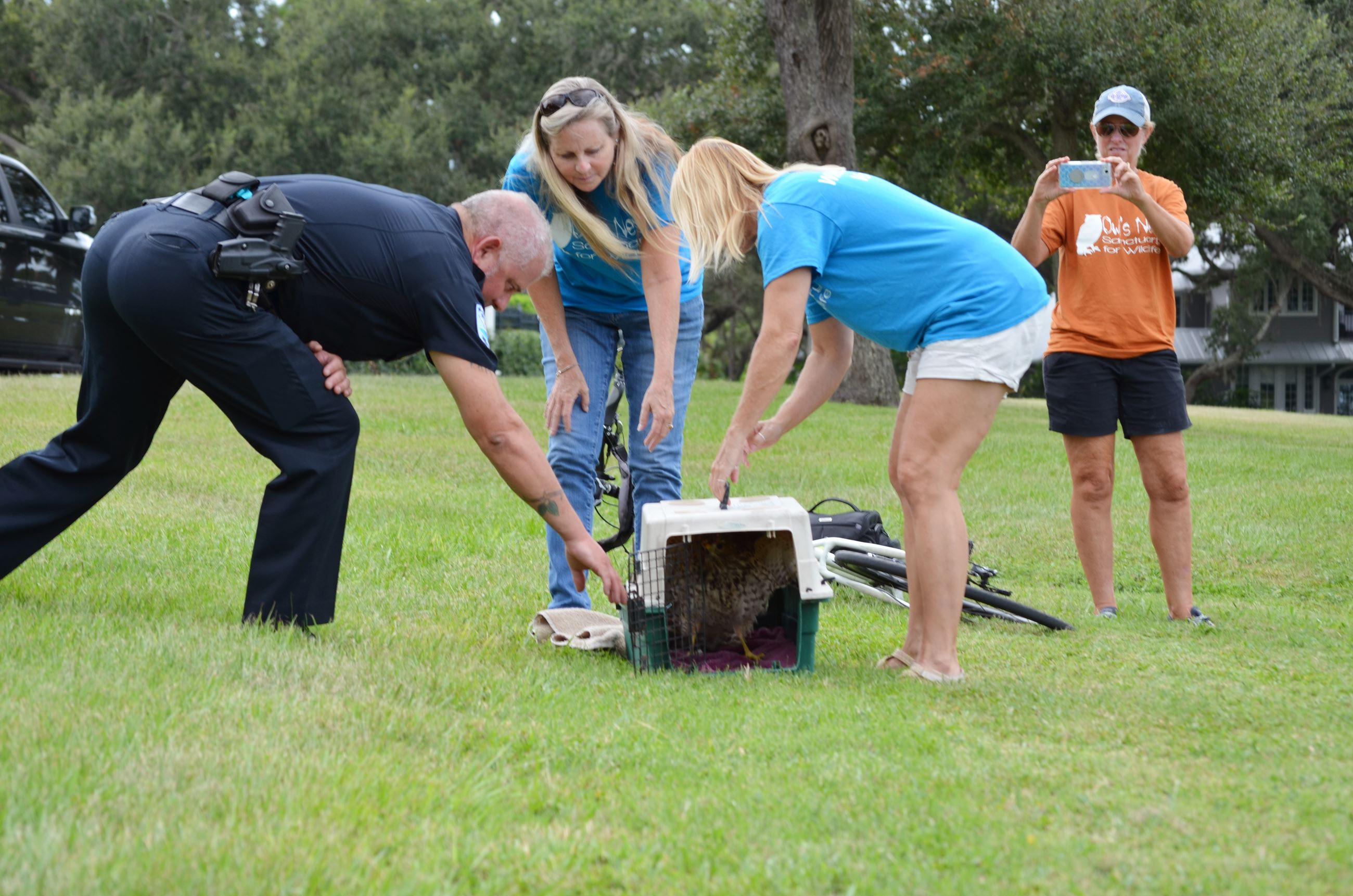 Belleair Officer Albertson partners with residents to release a rehabilitated hawk back into Belleai